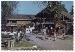 74 EVIAN LES BAINS - Edts Schall Press - Hôtel De La Verniaz & Ses Chalets. L'Ecole D' Equitation. Tennis.(1) - Evian-les-Bains