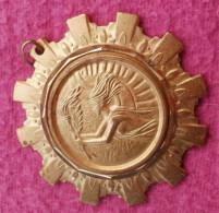 Medaille Dorée Conseil Général CODACS 31, FRANCE SPORT Diamètre 55 Mm - France