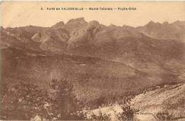 Foret De Valdoniello Monte Tafonato Poglia Orba - Andere Gemeenten