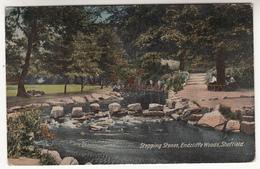 Sheffield, STepping Stones, Endcliffe Woods (pk31498) - Sheffield
