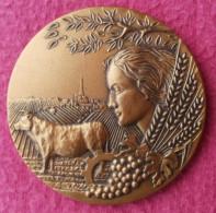 Medaille En Bronze FL (Florentin) Offert Par La Chambre D'Agriculture De Haute Garonne  65 Mm - France