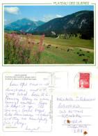 Plateau Des Glieres, Haute-Savoie, France Postcard Posted 1998 Stamp - Frankrijk