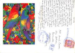Lisa V Keaney, Parrot Talk, Brazil Postcard Posted 2003 Stamp - Brazilië