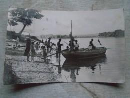 D144199 Hungary  Mohács  Duna Danube Donau Real Photo  Postcard  1950-60 - Singes