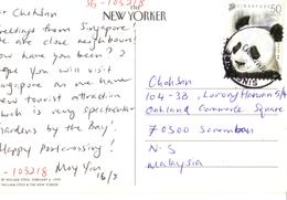 20C: Singapore Panda Stamp Used On Winter Sport, Snow, Snowman Postcard - Singapore (1959-...)
