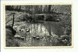 Falaen Le Pont Des Gattes Sur La Molignée - Onhaye