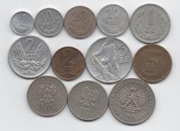 Pologne : Lot De 12 Pièces Différentes 1 Grosz - 20 Zlotych 1949-1984 - Polonia
