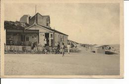 Coq-sur-Mer. Buvette Des Dunes. - France