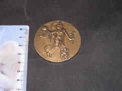 Centenaire Belgique 1830/1930 - Médaille R.A.U. Et Fisch & Cie - Unclassified