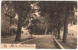 BE_Namur_La Plante_N_01_av Félicien Rops - Namur