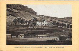 Photo Cartonnée: Cellars & Vineyards Of The Pleasant Valley Wine Co., At Rheims - Format 7,5 X 11,5 Cm - Places
