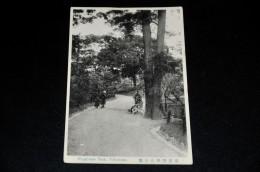 10- Nogeyama Park, Yokohama - Yokohama
