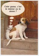 A SAISIR !!!! CHIEN Et CHAT - Hunde