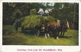 Greetings From Lac Du Flambeau, Wis. WI - Work In The Fields (travaux Des Champs: Foins) - Etats-Unis