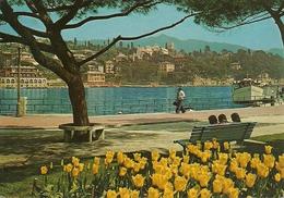 Santa Margherita Ligure (Genova, Liguria) Lungomare, Promenade Along The Sea - Genova (Genua)