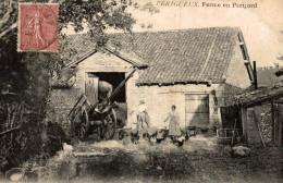 PERIGUEUX FERME EN PERIGORD - Périgueux