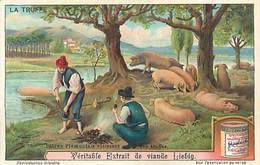 PIE-16- - 4528 :  LIEBIG  LA TRUFFE CULTURE DANS LE PIEMONT - Liebig