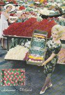 D27702 CARTE MAXIMUM CARD 1973 NETHERLANDS - FLOWER AUCTION AALSMEER CP ORIGINAL - Maximumkarten (MC)