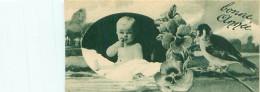 Carte Mignonette       -   Bonne Année      ,  Bébé ,oiseaux      N 1086 - Nouvel An