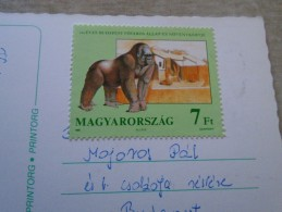 D144500 HUNGARY- Postcard  - Gorilla  Stamp - Budapest  ZOO 125 Yrs  1991