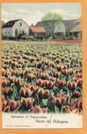 Groet Uit Hillegom 1903 Postcard - Otros