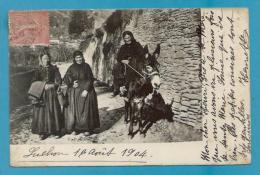 CPA Paysannes - âne Mule Mulet LUCHON 31 - Luchon