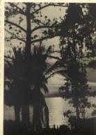 PHOTO 7.5x10.5 (ruanda)    Lac Tanganyika - Ruanda-Urundi