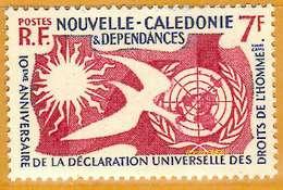 Nouvelle-Calédonie **LUXE 1958 P 290 - Nouvelle-Calédonie