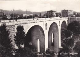 ASCOLI PICENO - F/G  B/N Lucido    (81012) - Ascoli Piceno