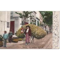 SVLLTPA1899-LFTD2497.Tarjeta Postal DE SEVILLA.Edificio,burro Cargado Con Paja.VENDEDOR DE PAJA  DE SEVILLA - Sevilla