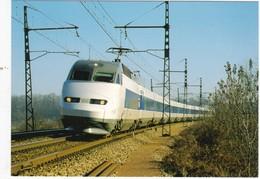 SARTHE N° 18  Train TGV Atlantique Rame 302 à Yvré L'évêque   Scan Recto Verso, Explications Au Dos - Treinen