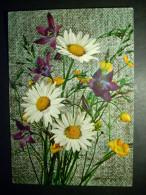 91 FLORES FLOWERS FLEURS POSTCARD POSTAL AÑOS 60/70 ESCRITA - TENGO MAS POSTALES - Flores