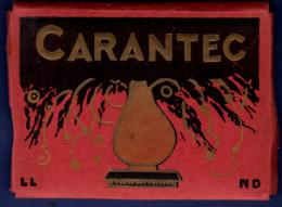 29 CARANTEC Carnet De Mignonettes 12 Vues - Carantec