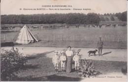 """44 LOIRE ATLANTIQUE LA CHAPELLE SUR ERDRE """"  Parc De La Gascherie Chevaux Anglais """"  Chapeau  N°16 RARE RECHERCHE - Nantes"""