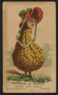 USA Boston Parker & Wood, Seeds & Tools Comic Advertising Card. - Advertising