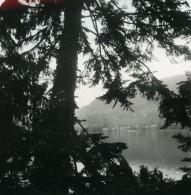 Italie Lac De Come Varenna Panorama Villa Carlotta Ancienne Photo Stereo 1900 - Stereoscopic