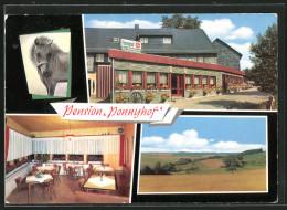 "AK Bergenhausen, Pension & Gasthaus ""Ponnyhof"" - Unclassified"
