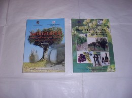 Marche / DALLA VITE AL VINO - DALL'OLIVO  ALL'OLIO - Books, Magazines, Comics