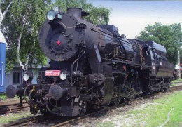 Steam Locomotive No 555-3008 Of ZSR (Slovakian Railways) In Pressburg 2013   -  CPM - Treni