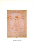 Leonardo Da Vinci, Art Painting Postcard Unposted - Peintures & Tableaux