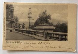 SOUVENIR DE LIEGI - LE BOEUF AU REPOS 1900 VIAGGIATA FP - Liège