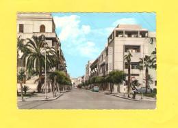Postcard - Libya, Tripoli      (V 30293) - Libia