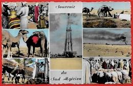 CPSM ALGERIE - Souvenir Du Sud Algérien (Vues Multiples Dont Puits De Pétrole) - Algerien