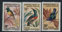 1965 Alto Volta, Uccelli  , Serie Completa Nuova (**) - Alto Volta (1958-1984)