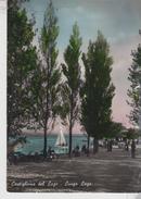 Castiglione Del Lago Perugia Lungo Lago  Vg - Perugia