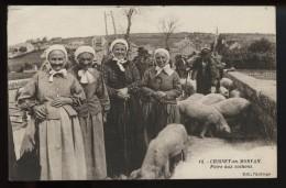 Chissey En Morvan Foire Aux Cochons - Francia
