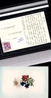 530035,Material Seiden AK Seidenkarte Appenzel Stickerei Heimarbeit Edelweiss - Ansichtskarten