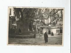 TURQUIE CONSTANTINOPLE PHOTO D'EYOUB . INTERIEUR DE LA MOSQUEE 1919 - Lieux