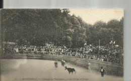 D77 - 9. -  MONTEREAU -  Courses De Taureaux   -  Le Corps à Corps - Montereau