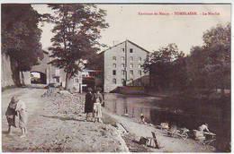 54. ENVIRONS DE NANCY . TOMBLAINE . LE MOULIN . ANIMEE . - Autres Communes